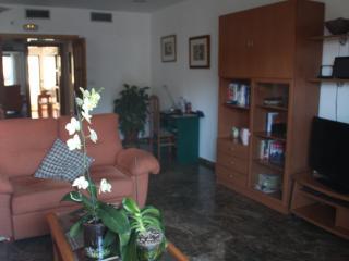Bonito apartamento en centro ciudad - Morche vacation rentals