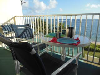Spectacular Ocean View, Secluded Sandy Beach, Pool - Hauula vacation rentals