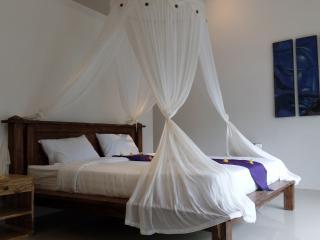 Private Room in Pool Homestay, Lovina - Anturan vacation rentals