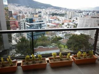 1 bedroom Apartment with Elevator Access in Quito - Quito vacation rentals