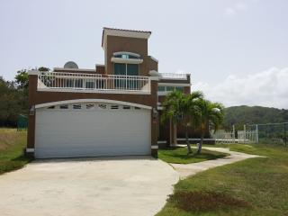 EXCELLENT VACATION HOUSE WITH OCEAN & FOREST VIEWS - Ceiba vacation rentals