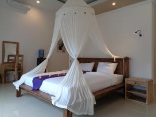 Private Room in Pool Homestay, Lovina - Anturan vacation rentals