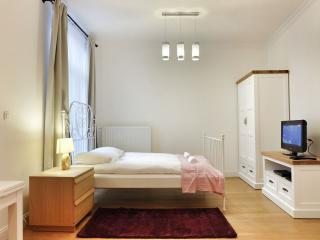 Top Spot Residence 10 apartment in Brussel centrum with WiFi & lift. - Brussels vacation rentals