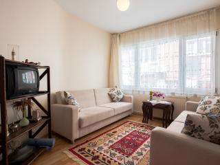 Close To The Ferry Port Kabataş And Taksi̇m Square - Istanbul vacation rentals
