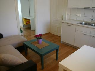 Centrally located penthouse for 8 people - Novalja vacation rentals
