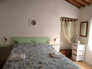 Sunny House with Internet Access and Wireless Internet - Diecimo vacation rentals