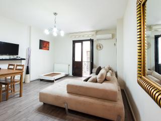 pro flats pera - Istanbul vacation rentals