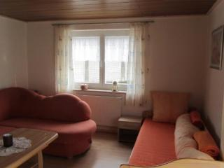 Vacation Apartment in Neukirchen vorm Wald - 700 sqft, active, bright, comfortable (# 9523) - Neukirchen vorm Wald vacation rentals