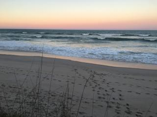 Ocean Front Suite | Sea Turtles & Sunrises - Melbourne Beach vacation rentals