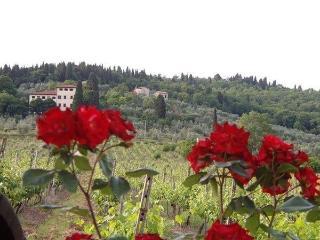 6 bedroom Villa in Rignano Sullarno, Tuscany, Italy : ref 1645001 - Rignano sull'Arno vacation rentals