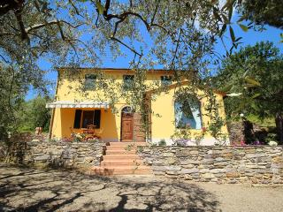 Country house amongst the olive trees - Vicopisano vacation rentals