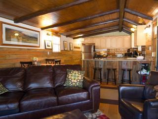 Family Haus near ski area - Sleeps 6+ - Breckenridge vacation rentals