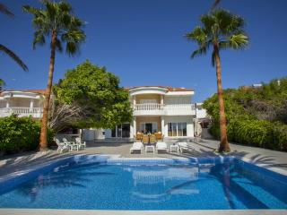 Sunny pool villa Larnaka Up to 10 sea view - Larnaca District vacation rentals