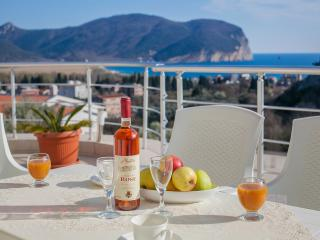 Apartments Jovicevic-Two Bedroom Ap with Balcony 4 - Petrovac vacation rentals