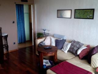 Messe Nbg, SIEMENS, UNI, AREVA, INA, PUMA - Erlangen vacation rentals