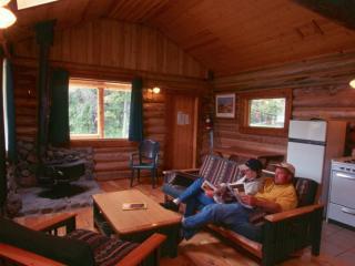 Deluxe Log Cabin #6 at Chaunigan Lake Lodge - Nemaiah Valley vacation rentals
