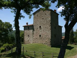 7 bedroom Villa in Palazzo del Pero, Toscana, Italy : ref 2020423 - Palazzo del Pero vacation rentals