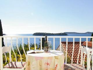 Villa in Dubrovnik Lozica, South Dalmatia, Croatia - Lozica vacation rentals