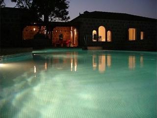 Villa in Bodrum, Agean Coast, Turkey - Ortakent vacation rentals