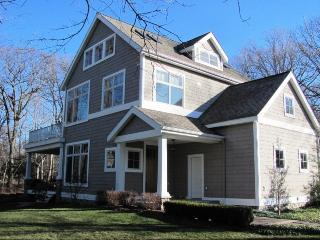 4 bedroom House with Deck in South Haven - South Haven vacation rentals