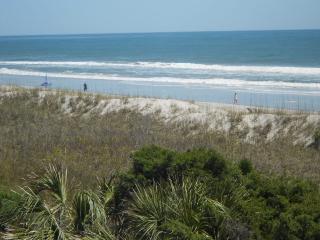 As Good As It Gets 131367 - Carolina Beach vacation rentals