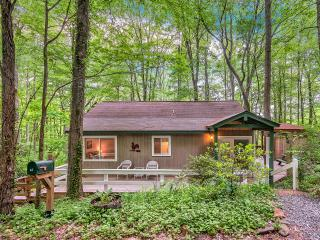 Smoky Mountain Treehouse - Cozy, Clean, Hot Tub - Maggie Valley vacation rentals