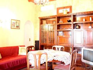 Lovely 2 bedroom Megas Gialos House with Internet Access - Megas Gialos vacation rentals