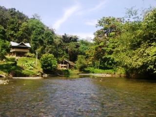 Beautiful 1 bedroom Cottage in Bukit Lawang - Bukit Lawang vacation rentals