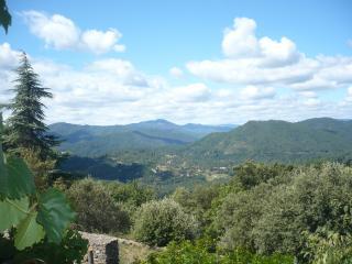 Mas cévenol typique perché en montagne - Saint-Jean-du-Gard vacation rentals
