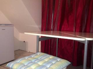 Comfy Fully furnished Studio Apartment - Oberhausen vacation rentals