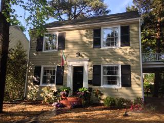 Perfect 1 bedroom Apartment in Richmond - Richmond vacation rentals