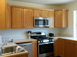 Country Convenient 2, 2bd townhouse Windham Hunter - Windham vacation rentals