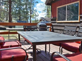 Walk to Big Bear Speedway!  BBQ, WiFi, Wood Deck - Big Bear City vacation rentals