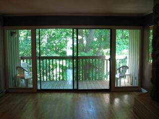 Nice 2 bedroom House in Traverse City - Traverse City vacation rentals