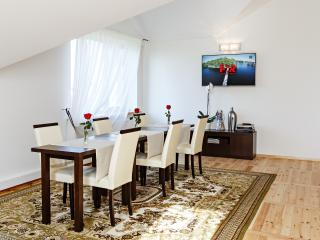 Modern apartment + dental care services - Kaunas vacation rentals