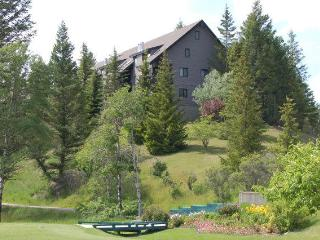 Mountain View Condo on Radium Golf Course - Radium Hot Springs vacation rentals