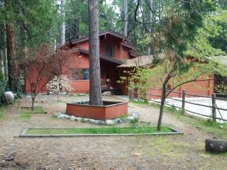 Luxurious Tree House on Strawberry Creek - Idyllwild vacation rentals