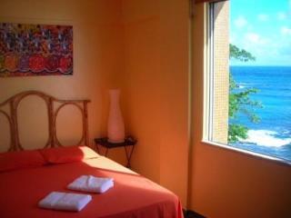 Amazing 180 Degree Ocean Views - Salvador vacation rentals