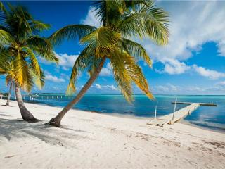 Perfect Villa with Internet Access and A/C - Little Cayman vacation rentals