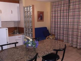 Beautiful 2 bedroom Salou Condo with Shared Outdoor Pool - Salou vacation rentals