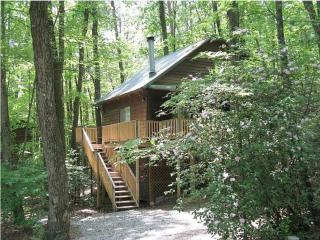 Cabin Nestled in the Woods with Bubbling Hot Tub - Helen vacation rentals