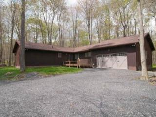 Deer Woods - 22 Sand Springs Drive - Canaan Valley vacation rentals