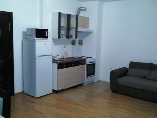 Comfy apartment for max 4 people.100 m to the sea - Ravda vacation rentals
