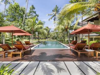 Villa Sabandari in Ubud Bali - Ubud vacation rentals