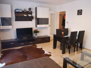 Nice Condo with Washing Machine and Television - Munich vacation rentals