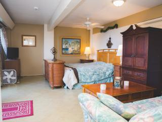 Ground Floor Studio, Uhaul Truck , BREAKFAST - Kailua-Kona vacation rentals