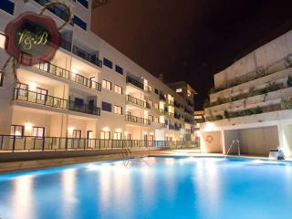 Perfect 1 bedroom Condo in Alicante with Internet Access - Alicante vacation rentals