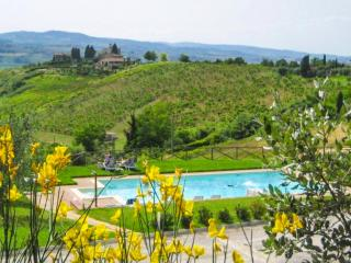 Villa with garden and pool and amazing view - San Gimignano vacation rentals