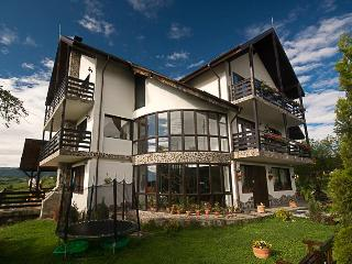 12 bedroom Lodge with Trampoline in Pestera - Pestera vacation rentals