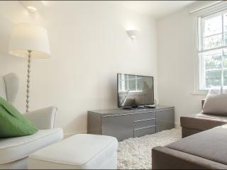 2 Bedroom 2 Bathroom En-Suite in London City - London vacation rentals